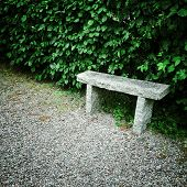 Stone Bench In Summer Garden