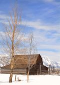 Mouton Barn In Teton National Park