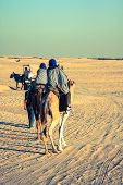 Beduins Leading Tourists On Camels At Short Tourist Tour Around The Beginning So Called Doors Of Sah
