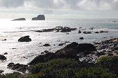 Oceano Pacífico, a costa de Big Sur, Big Sur, Califórnia