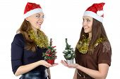 Image of two women with christmas fir tree
