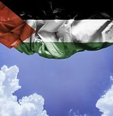 Palestine waving flag on a beautiful day