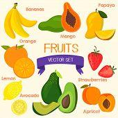 image of papaya fruit  - Bright fruits set in vector - JPG