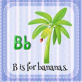 stock photo of letter b  - Flash card letter B is for bananas - JPG