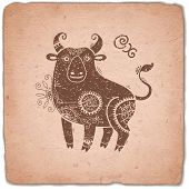 picture of oxen  - Ox - JPG