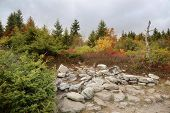 picture of plateau  - rocky plateau of the hills of Dolly Sods West Virginia mountains - JPG