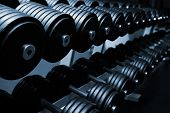 Heavy sports dumbbells in modern sports club