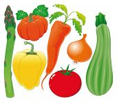 Vegetable family. Vector illustration, isolated objects.