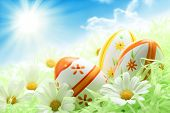stock photo of easter-eggs  - Colorful Easter Eggs and Daisy on Green Grass - JPG
