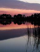 Sunset In Hal Scott Nature Preserve