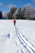 Cross-country skiing: young man cross-country skiing on a lovely sunny winter day