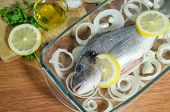 Raw Sea Bass Fish . Sea Bass Ready To Be Cooked poster