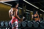 Sexy Fitness Brunette Woman Is Doing Biceps Curls With Dumbbells In The Gym poster