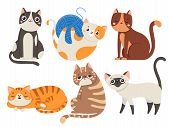 Cute Cats. Fluffy Cat, Sitting Kitten Character Or Domestic Animals Isolated Vector Illustration Col poster