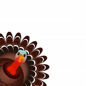 Colorful Cartoon Of Turkey Bird For Happy Thanksgiving Celebration poster