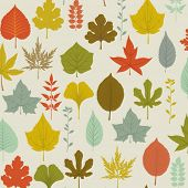 Autumn Leaves Pattern - seamless pattern with colorful fall leaves on a neutral background, includin
