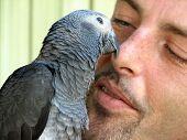 Bird And A Man