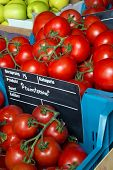 Beautiful fresh tomatoes on display at a greengrocer with european price tags and no brand names