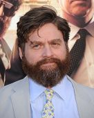 LOS ANGELES - MAY 20:  Zach Galifianakis arrives to the