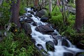 Waterfall Blur