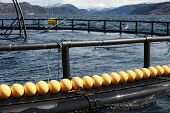 Fragment Of Fish Farm For Salmon Growing In Norway