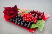 raspberries and red rose