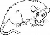 Opossum Animal Cartoon Coloring Book