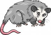 picture of opossum  - Cartoon Vector Illustration of Cute Opossum Animal - JPG
