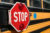 Stop For School Bus