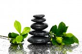 Spa wet Background with gardenia bud with leaves and black stones