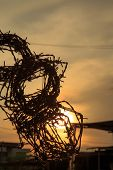 Barbed wire silhouette on sunset sky