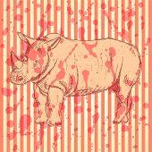 Sketch Rhino, Vector Vintage Background