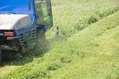 Cutting Grass_2