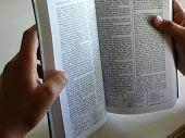 Book Of Mormon In Hands
