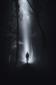 stock photo of crawl  - dark scene with man silhouette in forest at night on Halloween - JPG