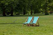 Sunbathing At The Park