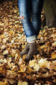 Blue jeans and autumn colorful leaves