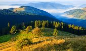 Mountains In The Carpathians