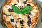 Italian pizza with olives cheese basil anchovies