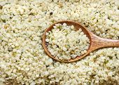 Hemp Seeds Close Up