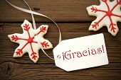 Christmas Star Cookies With Gracias