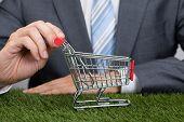 Businessman Holding Shopping Cart On Grass