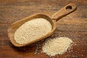 gluten free amaranth grain on a rustic wooden scoop against grunge wood table