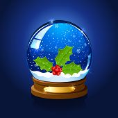 Christmas Snow Globe With Holly Berry