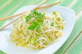 picture of soybean sprouts  - salad with sprouts on the white plate - JPG
