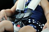 image of seatbelt  - a safety for the baby in car