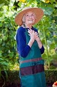 picture of nonverbal  - Portrait of a Thoughtful Smiling Senior Woman Standing at the Garden Wearing Gardening Hat and Apron with Hands on her Chest - JPG