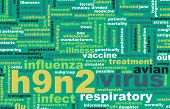 picture of avian flu  - H9N2 Concept as a Medical Research Topic - JPG