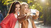 image of selfie  - Friends making selfie - JPG