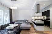 picture of light fixture  - Kitchen and living area in luxury home in scandinavian style - JPG